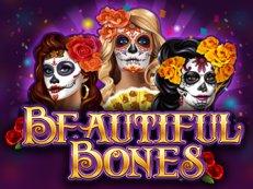 beuatiful bones